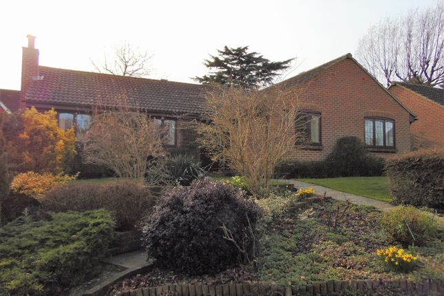 Thumbnail Detached bungalow for sale in Woodland Gardens, South Croydon