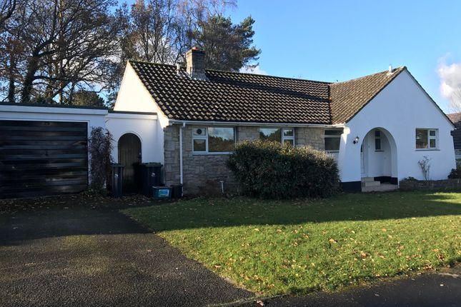 Thumbnail Bungalow to rent in Willow Way, Ferndown