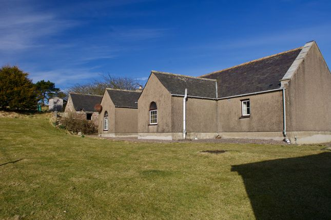 Thumbnail Equestrian property for sale in Rickarton, Stonehaven