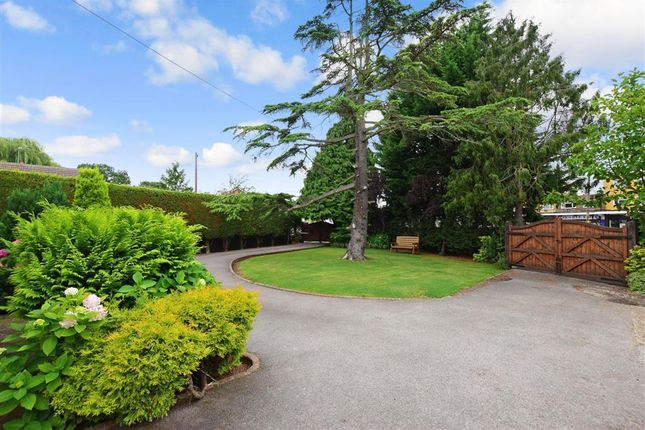 Thumbnail Detached house for sale in Southend Road, Wickford, Essex