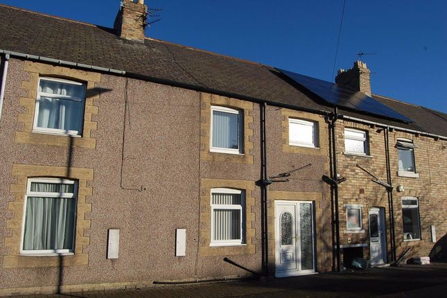 Thumbnail Terraced house to rent in Maple Street, Ashington
