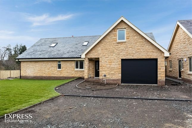 Thumbnail Detached house for sale in Burnside, Thropton, Morpeth, Northumberland