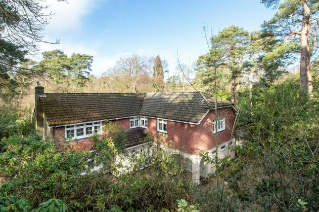 Thumbnail Detached house for sale in Broomrigg Road, Fleet