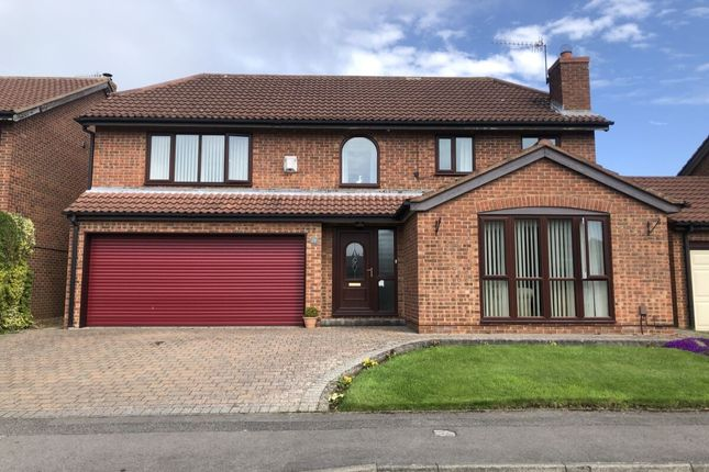 Thumbnail Detached house for sale in Great Auk, Guisborough