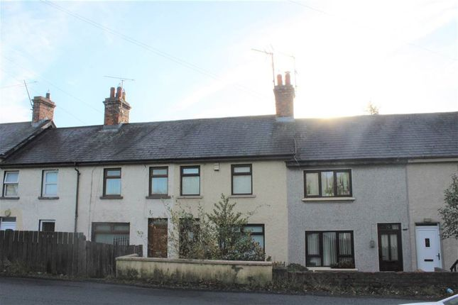 Thumbnail Terraced house for sale in Archview Terrace, Bessbrook
