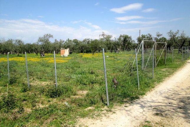 Land for sale in Ormos Prinou, Kavala, Gr