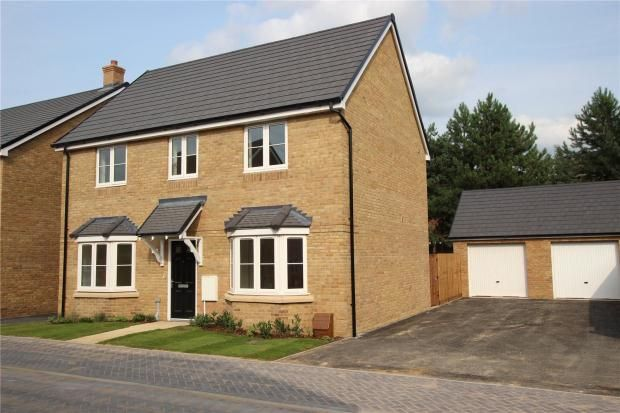 Thumbnail Detached house for sale in Sapphire Gardens, Mildenhall, Bury St Edmunds