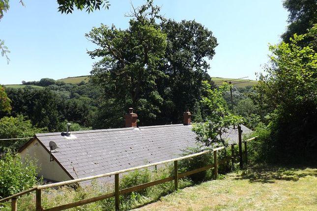 Garden of Muddiford, Barnstaple, Devon EX31