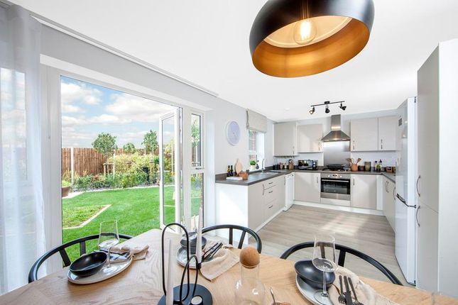 """3 bed semi-detached house for sale in """"Kingsley"""" at """"Kingsley"""" At Brogdale Road, Ospringe, Faversham ME13"""