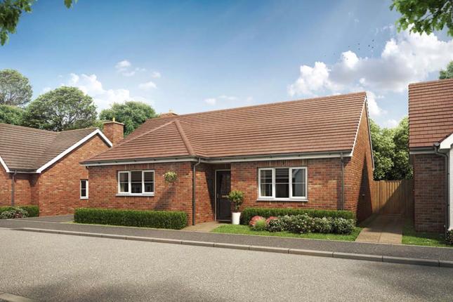 Thumbnail Detached bungalow for sale in Plot 2, Joye Close, Blunham, Bedford