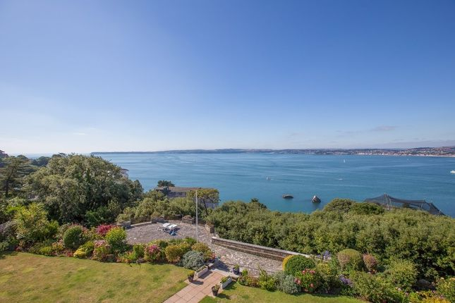 Thumbnail Detached house for sale in Torquay, Torquay