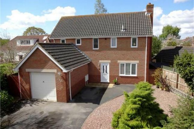 Thumbnail Detached house for sale in Harp Chase, Taunton, Somerset