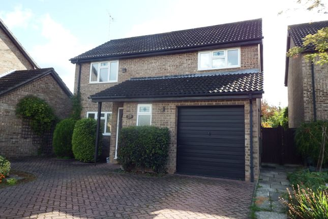 Thumbnail Semi-detached house to rent in Treelands Close, Cheltenham