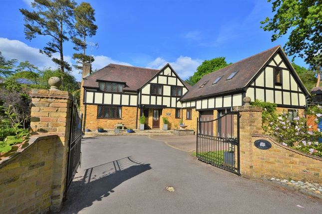 Thumbnail Detached house to rent in West View Road, Headley Down, Bordon