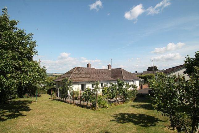 Thumbnail Detached bungalow for sale in Grove Lane Close, Stalbridge, Sturminster Newton, Dorset