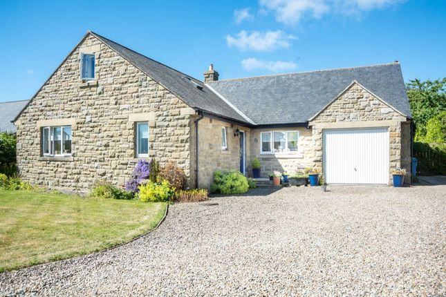 Thumbnail Bungalow for sale in The Croft, Longhoughton, Alnwick