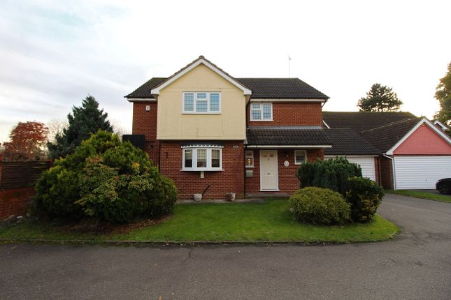 Thumbnail Detached house for sale in Bishops Court Gardens, Chelmsford