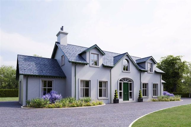 Thumbnail Detached house for sale in Drumcullan Road, Downpatrick, Down