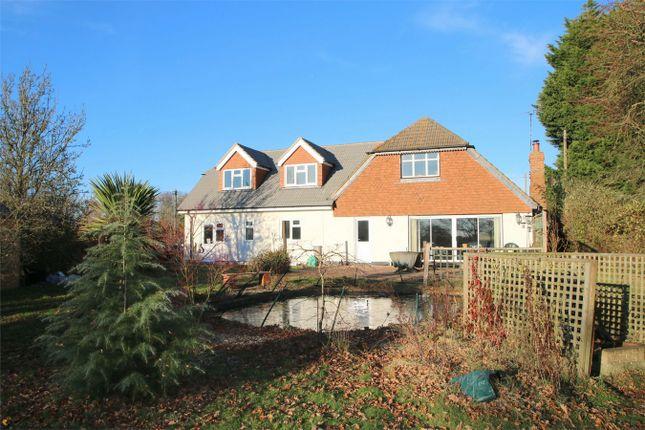 Thumbnail Detached house for sale in Whitestones, Tenterden Road, Biddenden, Kent
