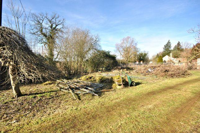 Thumbnail Land for sale in Lynn Road, Fincham, King's Lynn
