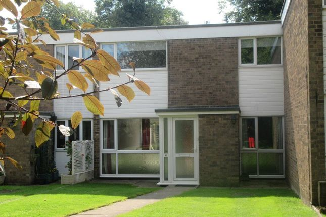 Thumbnail Property to rent in Clare Court, St. Ives, Huntingdon