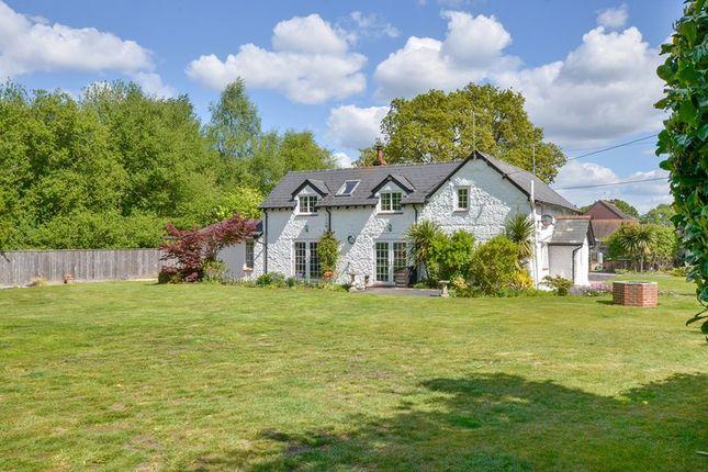 Thumbnail Detached house for sale in Ringwood Road, Three Legged Cross, Wimborne, Dorset