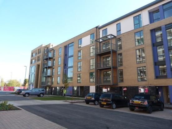 Thumbnail Flat to rent in Pulse Development, Colindale
