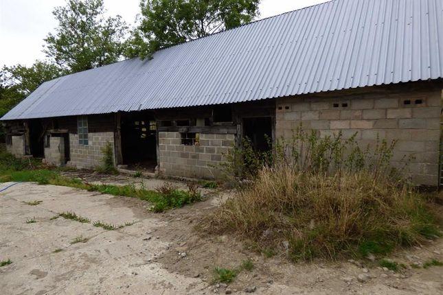 Thumbnail Barn conversion for sale in Bwlch-Y-Ffridd, Newtown