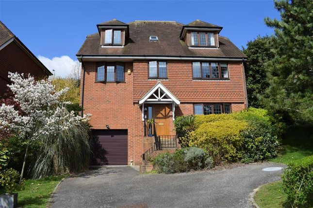 Thumbnail Detached house for sale in Beachy Head View, St Leonards-On-Sea, East Sussex