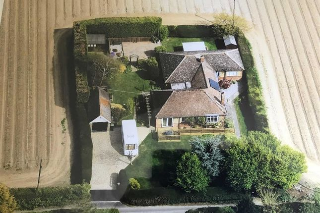Thumbnail Detached bungalow for sale in Wayborough Hill, Minster, Ramsgate, Kent