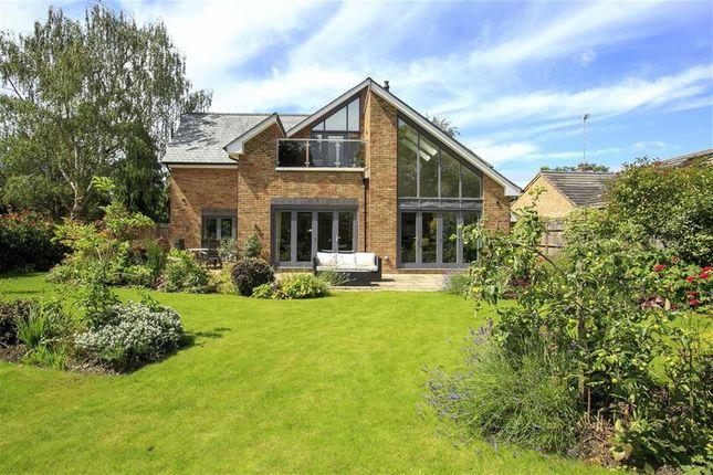 Thumbnail Detached house for sale in St. Albans Gardens, Teddington