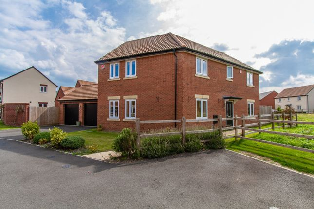 Thumbnail Detached house for sale in Lime Avenue, Sapcote
