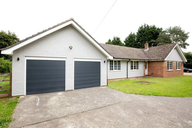 Thumbnail Detached bungalow for sale in Dog Lane, Horsford, Norwich