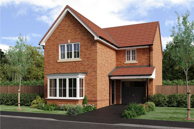 """Thumbnail Detached house for sale in """"Malory"""" at Joe Lane, Catterall, Preston"""
