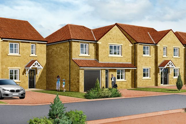 Thumbnail Detached house for sale in Plot 1, 'the Cambridge', Bellwood Court, Hoyland, Barnsley