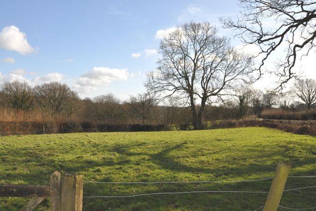 Dsc_1464 of Stepneyford Lane, Benenden, Cranbrook TN17