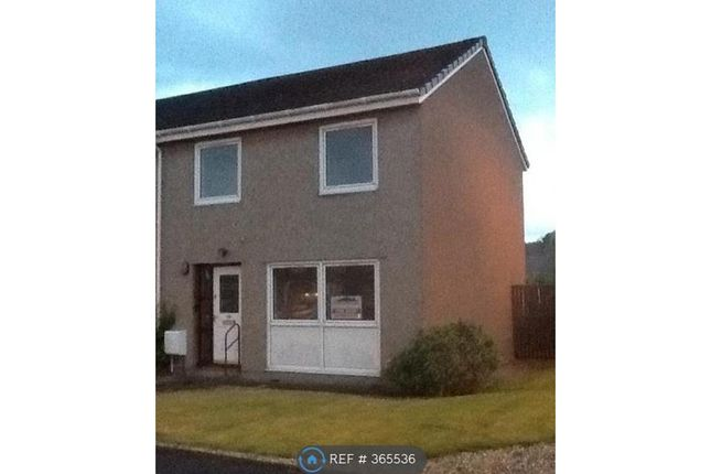 Thumbnail Semi-detached house to rent in Carrick Court, Stirling