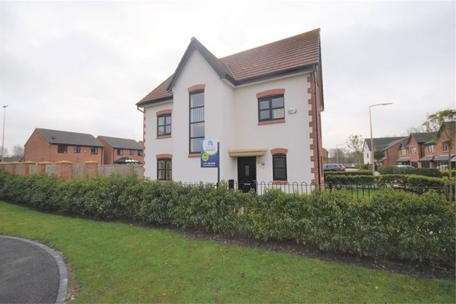 Thumbnail Detached house to rent in 5 Kingston Grove, Stockport, Cheshire