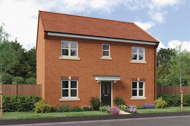 "Thumbnail Detached house for sale in ""Buchan"" at Leeds Road, Thorpe Willoughby, Selby"