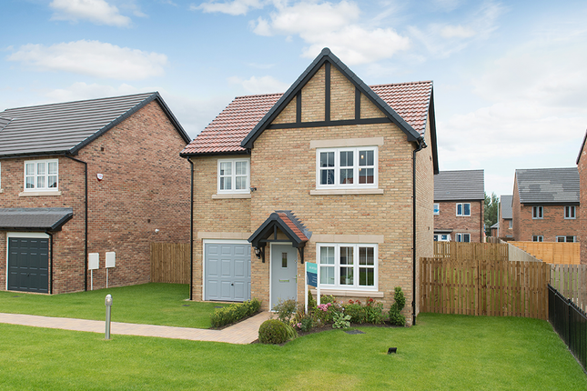 """3 bed detached house for sale in """"Butler"""" at Low Lane, Acklam, Middlesbrough TS5"""