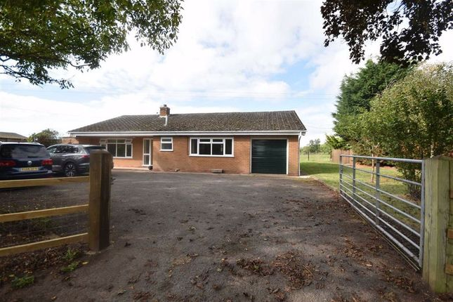 2 bed detached bungalow to rent in Otherton Lane, Cotheridge, Worcestershire WR6