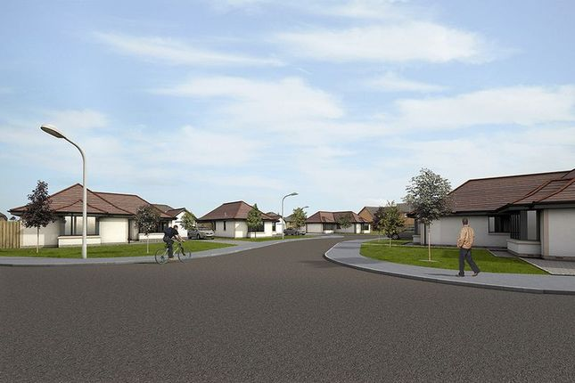 Thumbnail Detached bungalow for sale in Plot 3, Logandale Court, Symington, Biggar