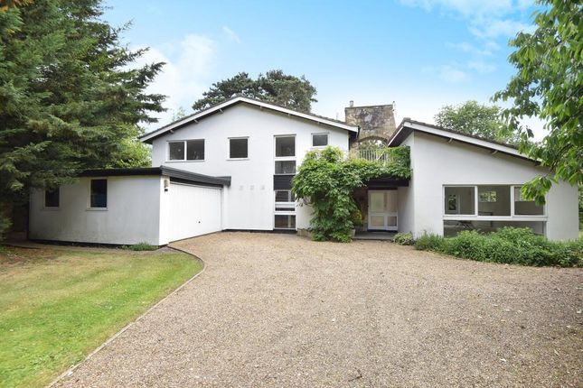 Thumbnail Detached house to rent in Canon Hill Drive, Maidenhead