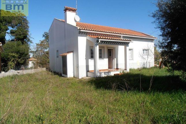 Thumbnail Semi-detached house for sale in Gáfete, Crato, Portalegre