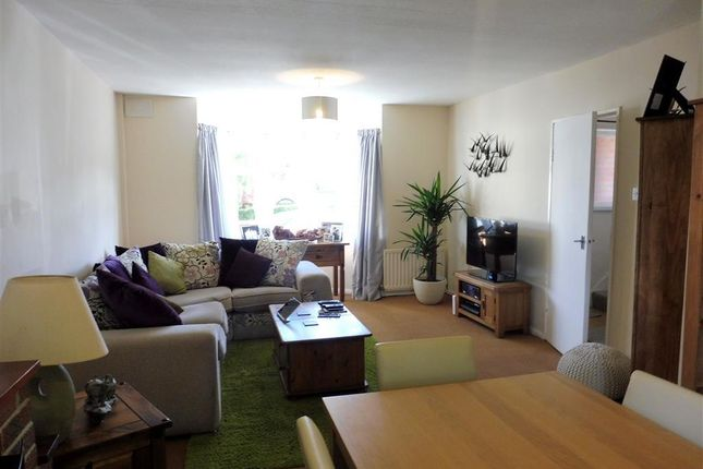 Thumbnail Property to rent in Avon Road, Torquay