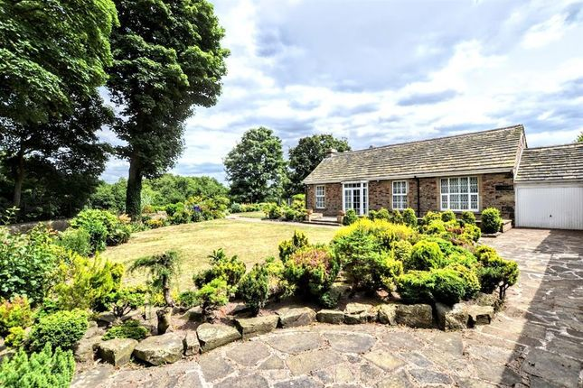 Thumbnail Bungalow for sale in Hall Close, Worsbrough, Barnsley