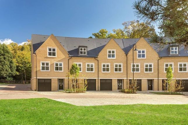 """Thumbnail Terraced house for sale in """"The Alexandra"""" at Wick Road, Englefield Green, Egham"""