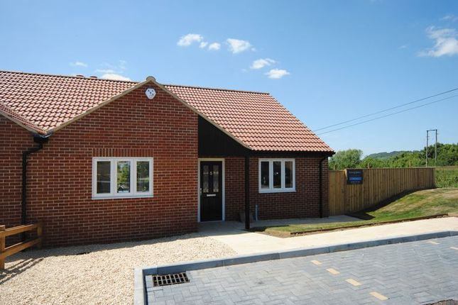 Thumbnail Bungalow for sale in Kings Orchard Close, Langport