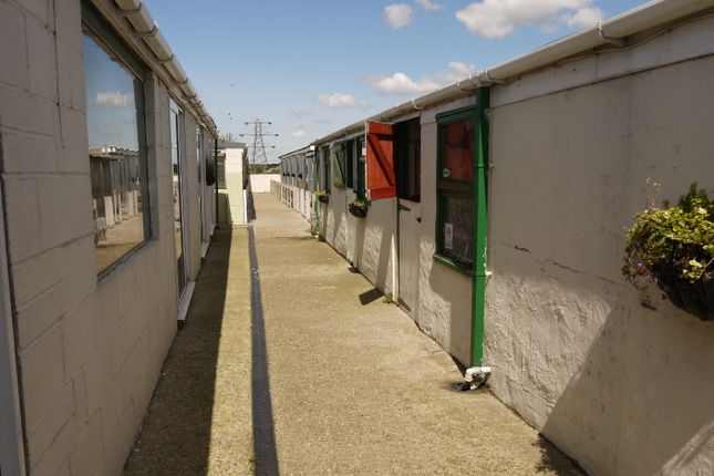 Thumbnail Property for sale in Kennels, Cattery & Equestrian Businesses S72, Shafton, South Yorkshire