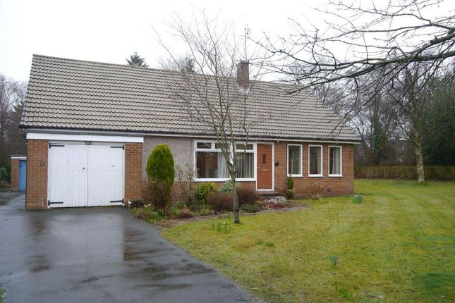 Thumbnail Detached bungalow for sale in Burnside, Ponteland, Newcastle Upon Tyne